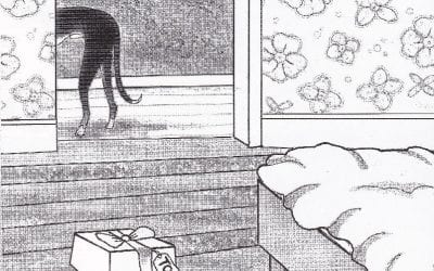 Pim, Memoirs of a canine raconteur: Day 10